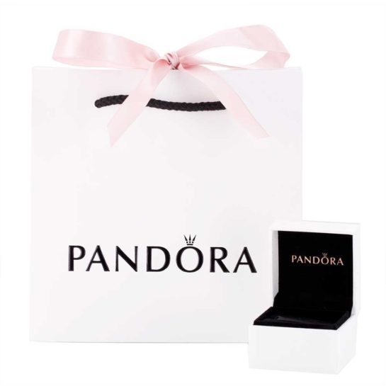 Pandora packaging including charm box and gift bag.